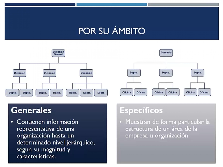 Clasificación de los organigramas por su ámbito