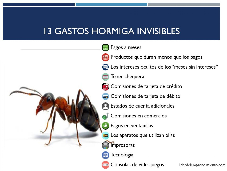 13 Gastos hormiga invisibles