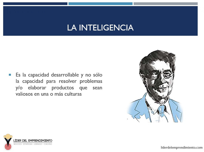 La inteligencia según Howard Gardner