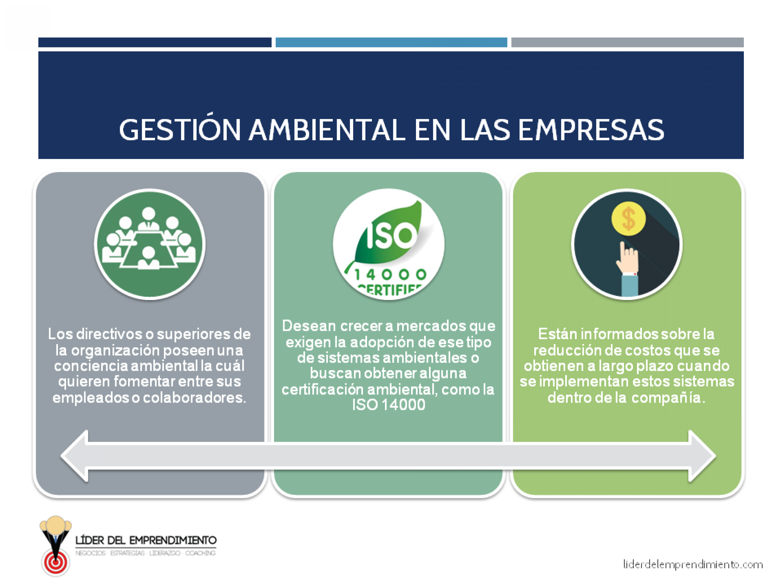 Gestión ambiental en las empresas