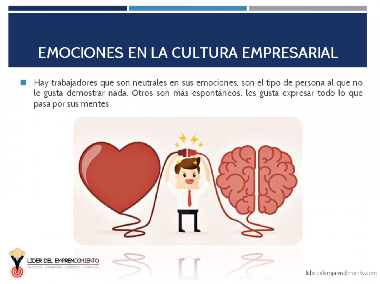 Emociones en la cultura empresarial